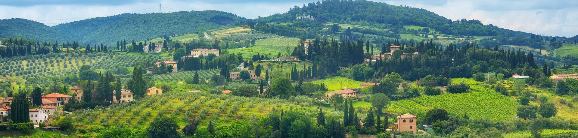 Italien: Weinberge - Emotion