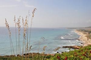 Strand auf Menorca
