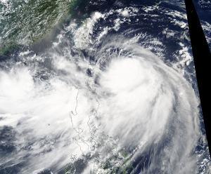 Taifun Nesat