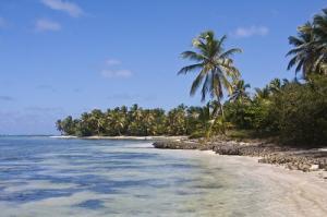 Dominikanische Republik Punta Cana Strand