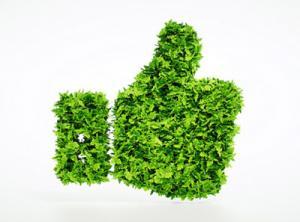 Ökostrom und Ökogas sind gut fürs Klima