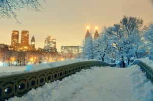 usa-new-york-winter