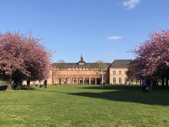 Grassi Museum - Leipzig