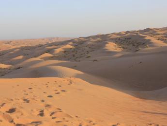 Wahiba Sands Wüste - Wahiba Sands
