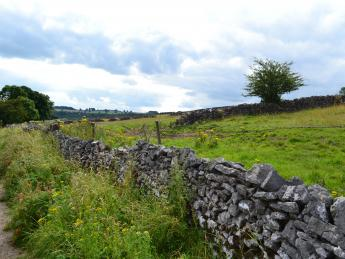Ashford (County Wicklow)