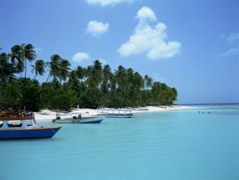 4209+Trinidad_und_Tobago+Tobago+TS_76807764_klein