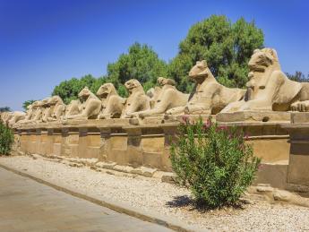 3713+Ägypten+Luxor_&_Assuan+TS_154242308