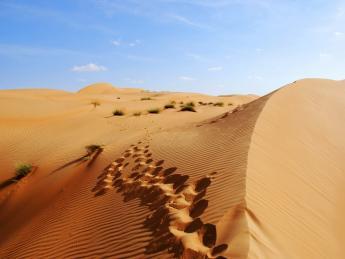 Omanische Wüste