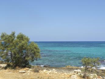 356+Spanien+Mallorca+S'_Illot+TS_180440701