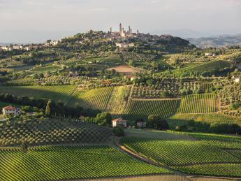 2617+Italien+San_Gimignano+GI-616158988