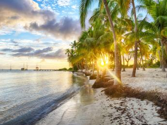4162+Guadeloupe+Saint_Francois+Strand_Anse_Chamapgne+GI-846262420_