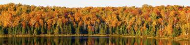 Titelbild Die 10 besten Reiseziele für einen goldenen Herbst