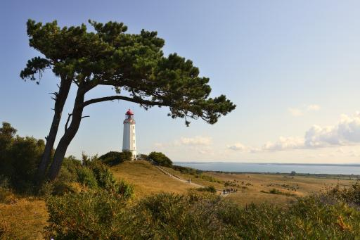 Leuchtturm Dornbusch - Hiddensee