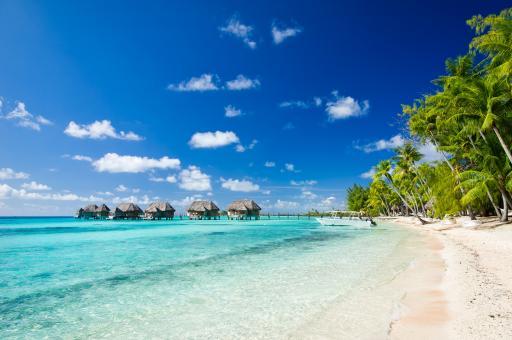 27+Französisch-Polynesien+GI-550870471