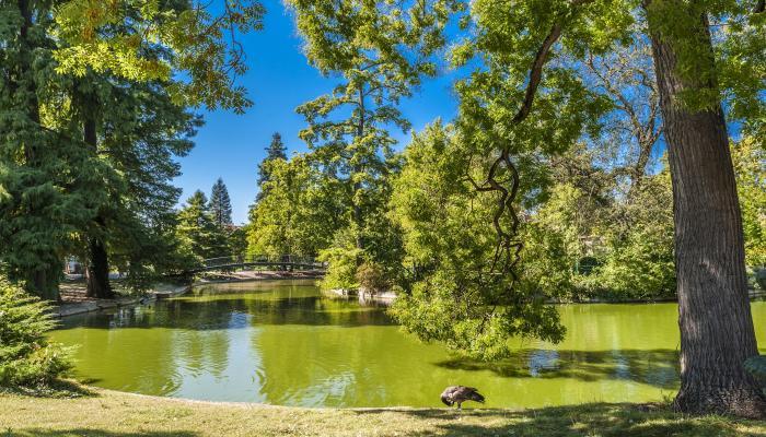 Park, See - Bordeaux