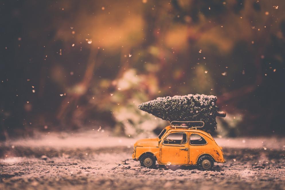 6 Varianten, wie ihr euren Weihnachtsbaum nach Hause transportieren ...
